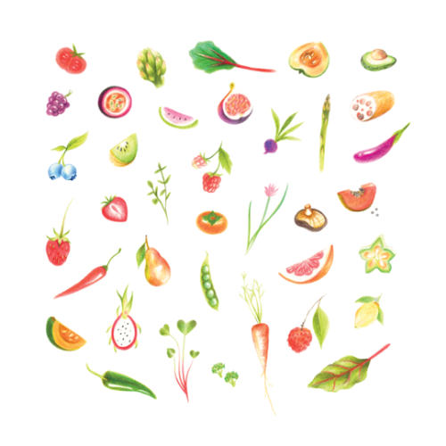 [Tattly]  Petite Produce Sheet