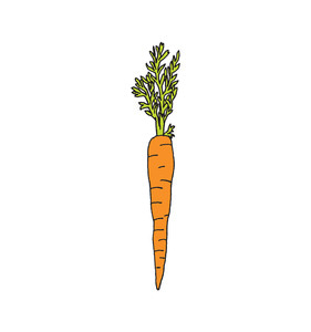 [Tattly] Carrot Pairs