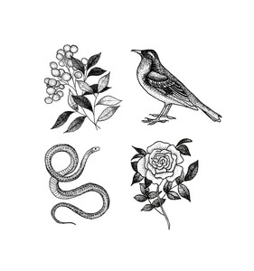 [Tattly] Flora And Fauna Set
