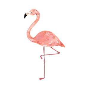 [Tattly] Flamingo
